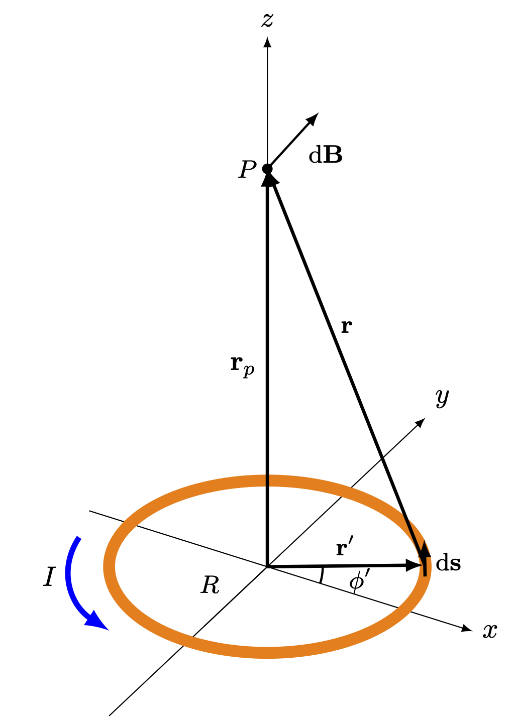 circular-loop