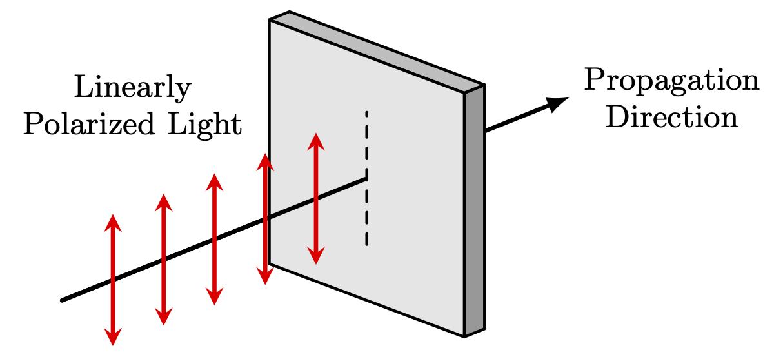 linearly-polarized