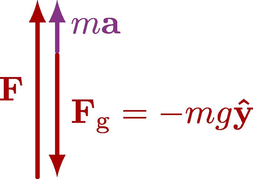dynamics_normal-006.png