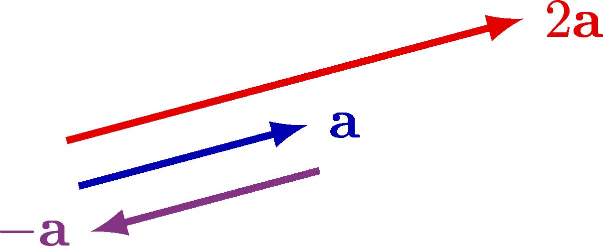 vectors-005.png